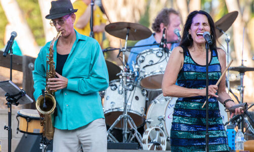 Symphony in the Park Concerts on hold
