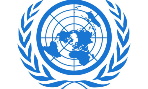 Marshall takes home Jr. Model UN honors