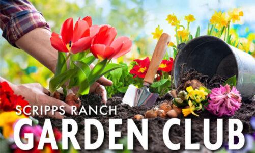 Gardeners celebrate their harvests