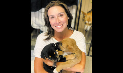 A second chance for abandoned pups